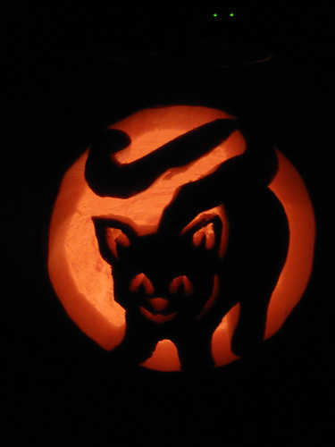 Cat s eyes pumpkin carving ideas for halloween