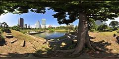 Kyu Shiba Rikyu Garden: West lake