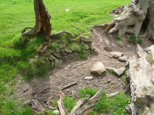Herringbone construction exposed by erosion