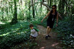 sequoia leading grandma neeta through the woods    M…