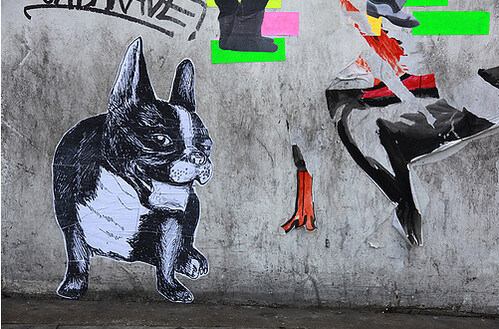 french bulldog in london