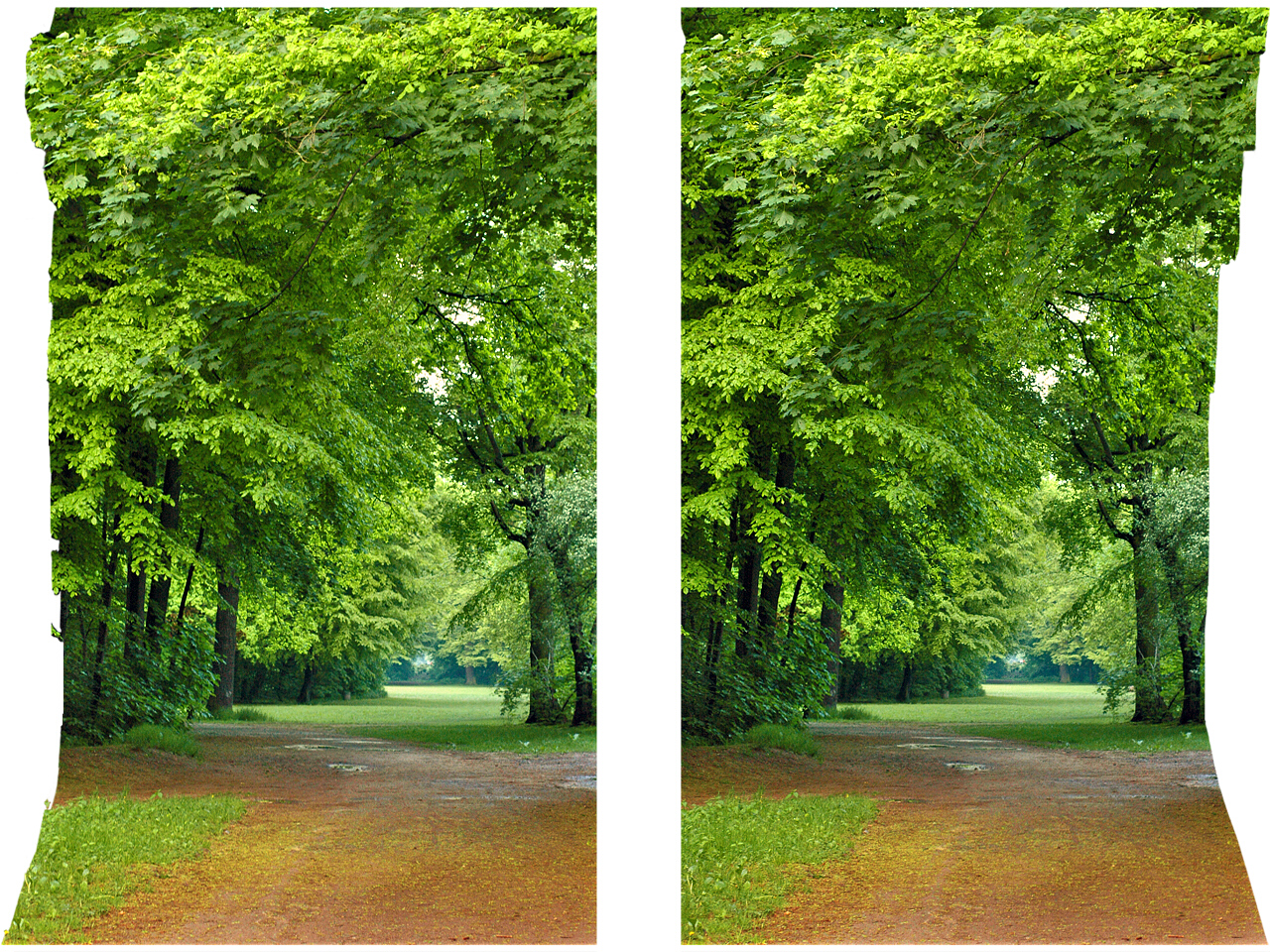 Airtight frame iii green world stereoscopic cross eye 3d