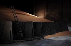 Grain silo [14]