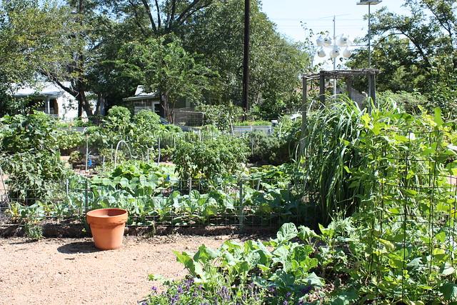 Garden eastside cafe flickr photo sharing for Eastside urban farm and garden