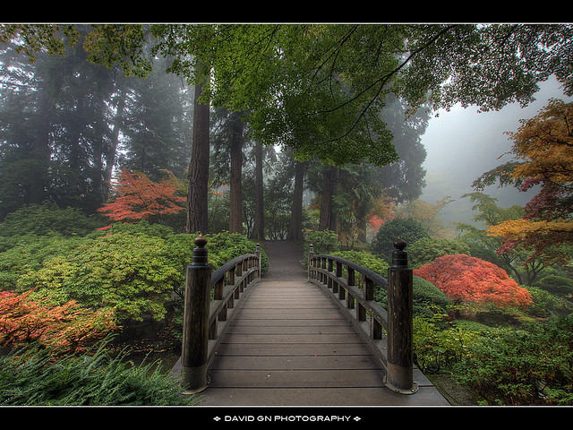 The Bridge at Portland Japanese Garden