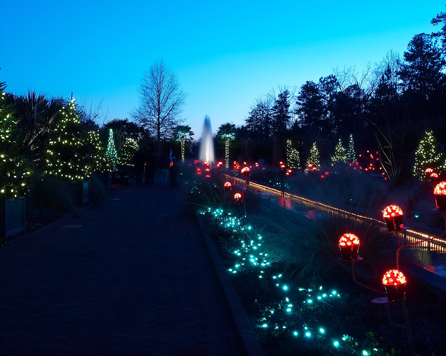 Flickriver Photoset 39 Christmas Lights Daniel Stowe Botanical Gardens 39 By Rick 28105