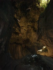 sea cave(0.0), caving(0.0), stalagmite(0.0), pit cave(1.0), formation(1.0), cave(1.0),