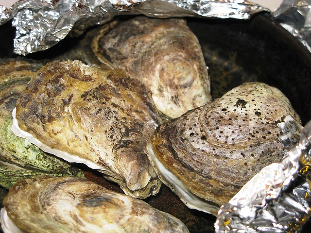 Roasted Oyster | Flickr - Photo Sharing!
