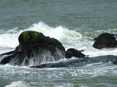 vivekanand rocks