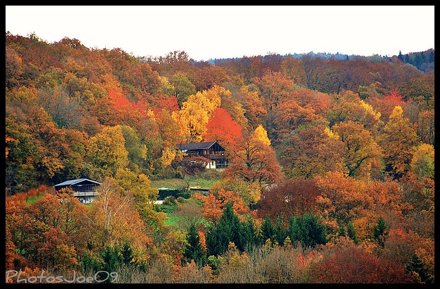 ~~~Novembre en Franche Comté~~