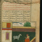 Illuminated Manuscript, Collection of poems (masnavi), A maid, who used to sleep with a donkey, pretends to feed the animal, Walters Art Museum Ms. W.626, fol. 230b