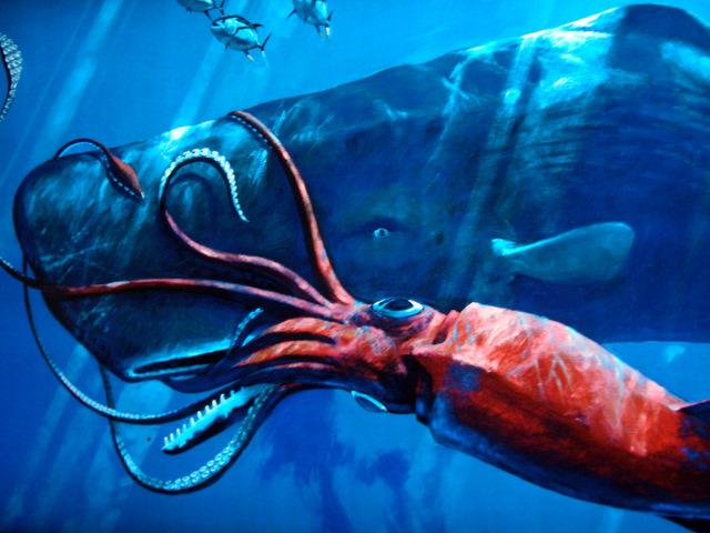 giant killer squid - photo #17