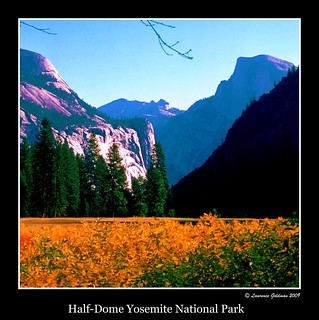 Half Dome from Yosemite Valley Floor.