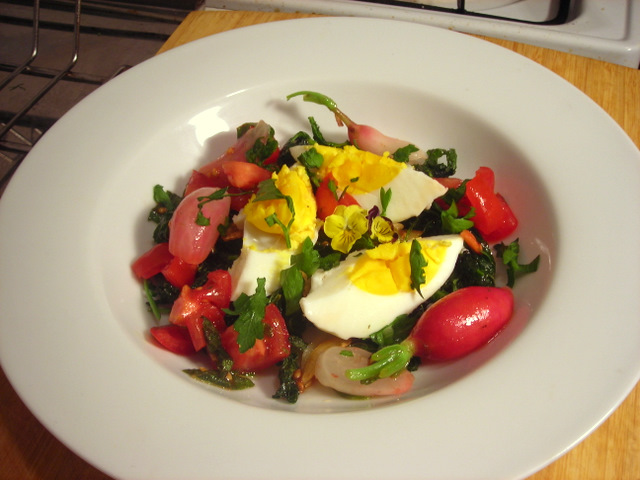 Radish greens, Campari tomato and radish salad, with hard-cooked wild turkey eggs and herb vinaigrette