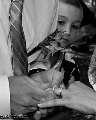 Ty and Avriel's Wedding