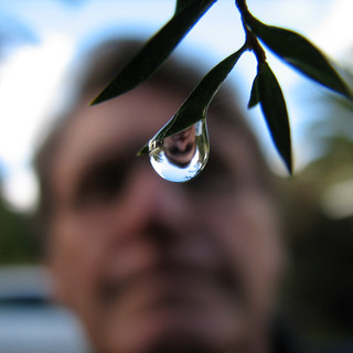 Self portrait in a drop