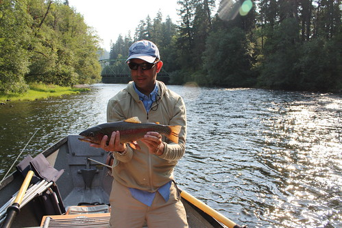 Fly fishing opportunities remain strong around eugene area for Fishing eugene oregon