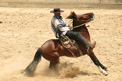 Traditional Rodeo in El Cuadro Ranch Chile | Flickr ...