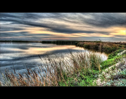 The Wetlands in HDR