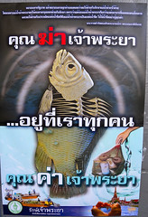 Don't Pollute the Chao Phraya River!