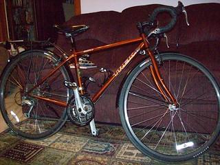 Trek 520 with Brooks B-17 and Planet Bike Fenders