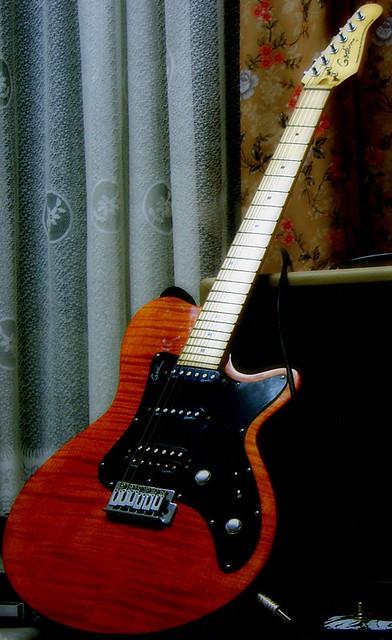 Photo:Godin Guitar By jaxon s