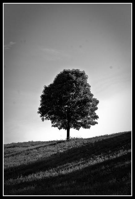 Rural Virginia.