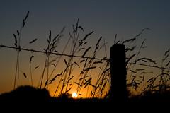 Coucher de soleil / IMG_3505