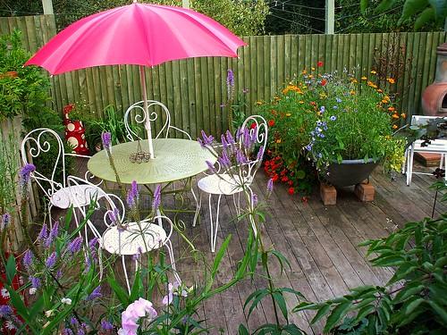 Whitney's garden