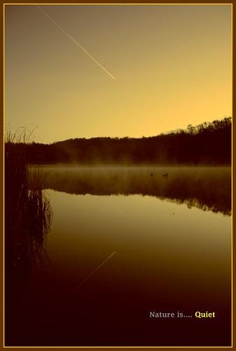 water canon dawn iso100 quiet ducks roundpond 18mm f35 mendonponds xti 1160sec monroecountyparks