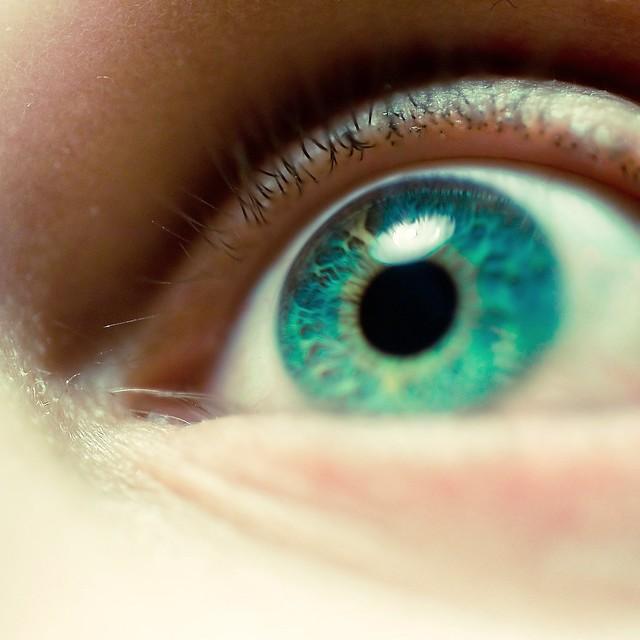 macro eye flickr photo sharing