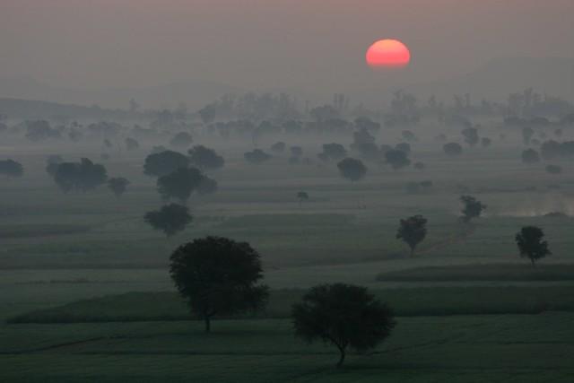 Inde du nord: le jour se lève sur la campagne du  Rajasthan.
