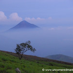 Above the Clouds - Nicaragua