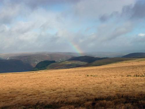 wales geotagged rainbow unitedkingdom powys gbr llanwrthwl omm elanvalley mountainmarathon omm2009 originalmountainmarathon llanfihangelbrynpabuan cnapiaurferlen geo:lat=5223087485 geo:lon=358746529