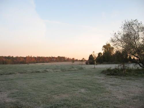 autumn sunrise virginia frost mahockney mahockneygardens