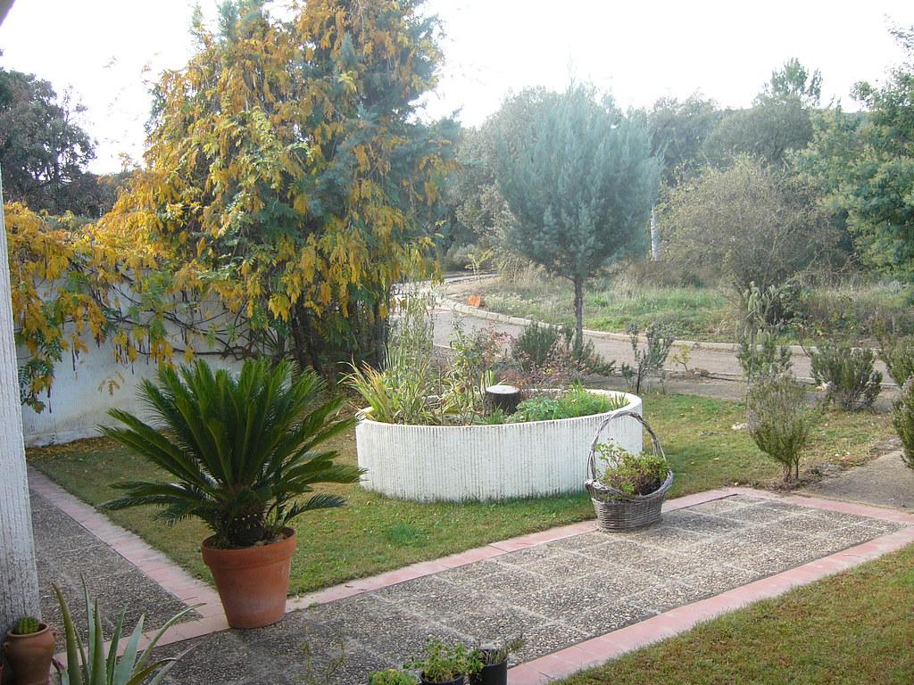 Jardin en chalet extremadura p g 1 espacio proyecto for Jardines pequenos horizontales