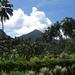SIT Study Abroad Samoa