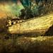 Barca-Texturas.  Explore Jan 8, 2010 #405