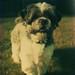 Small photo of Reginald Butler is a hunter