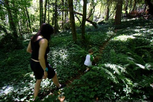 sequoia leading grandma neeta through the woods    MG 8366