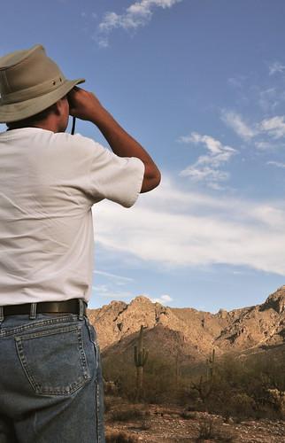 arizona clouds landscape tucson scenic scene saguaro sonorandesert desertsky picachoview