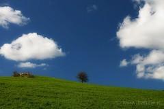 Landscape, Seascape & Cloudscape