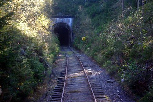 railroad tree museum train pentax sweden tunnel värmland svanskog k200d negeasca jååj bollsbyn bollsbytunnel