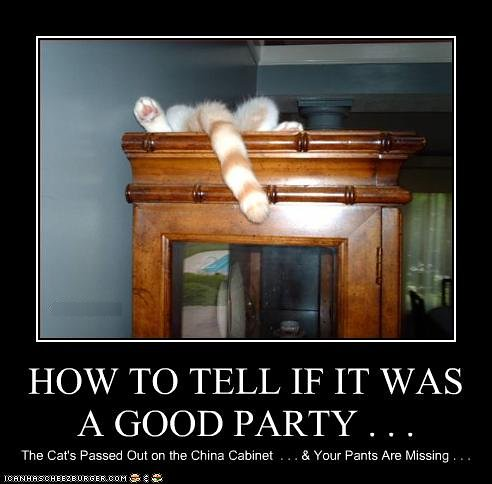 cat-had-a-good-party