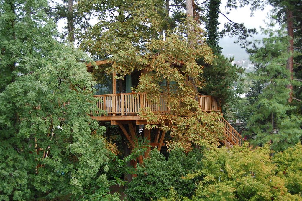 I 5 regali eco che vorresti trovare sotto l albero ecobnb - Il giardino dei semplici manta ...