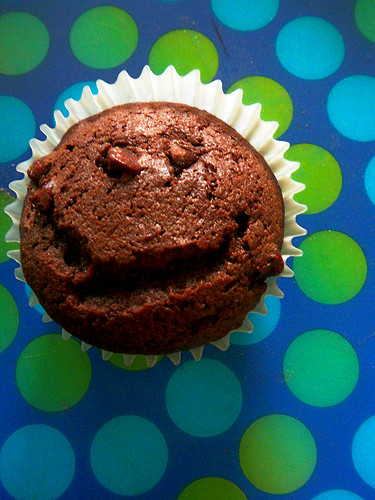 Yummy smiling chocolate chip fudge muffin cupcake