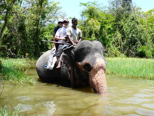 Montando en elefante en Sri Lanka