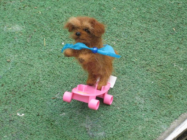 Needle Felted Dog / Norfolk Terrier Chester skateboard pup by GOURMET FELTED