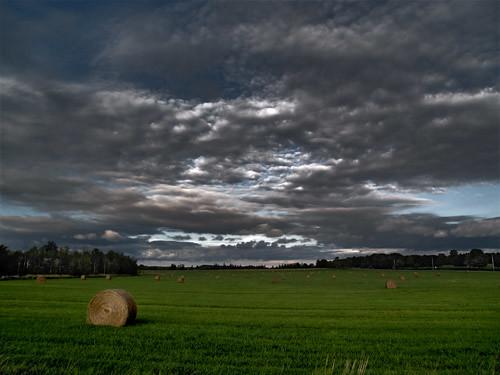 sunset sky cloud toronto ontario canada tree green art field rural digitalart harvest explore northamerica bale geo geotag hdr markham hazara olympusevolte500 mywinners abigfave olympuszuikodigital40150mm olympuszuikodigital14145mm
