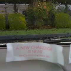 Cam's Fortune